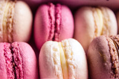 Colourful sweet tasty macaroons Royalty Free Stock Photography