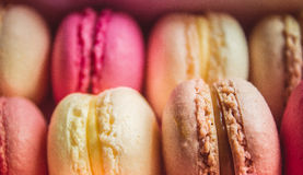 Colourful sweet tasty macaroons Stock Photos