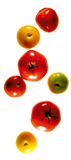 Colourful Tomatoes composing Royalty Free Stock Images