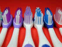 Colourful toothbrush obraz royalty free