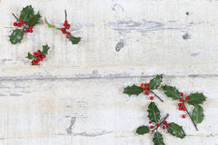 Colourful traditional Christmas holly with  red berries on grunge wood texture of old weathered boards  copyspace Royalty Free Stock Images