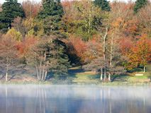 Colourful trees. Colourful trees in Autumn next to misty lake stock photos