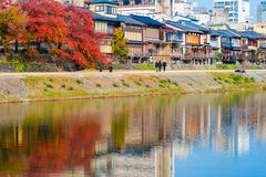 Colourful trees in Japan Royalty Free Stock Images