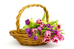 Colourful tulips in a basket Royalty Free Stock Photos