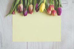 Colourful tulips on boards with a yellow sheet of paper. Stock Photos