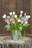 Colourful tulips in a bucket Stock Image