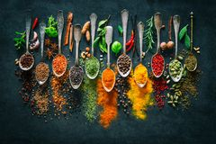 Herbs and spices for cooking on dark background. Colourful various herbs and spices for cooking on dark background Stock Photography
