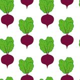 Beetroot seamless pattern. Colourful vector beetroot seamless pattern stock illustration