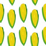 Corn seamless pattern. Colourful vector corn seamless pattern stock illustration