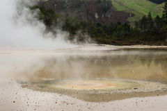 Colourful volcanic lake in Waiotapu Royalty Free Stock Photos