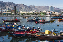 Colourful wooden fishing boats in the harbour at Antofagasta. Antofagasta, Chile - April 5, 2015: Colourful wooden fishing boats in the harbour at Antofagasta in Stock Image