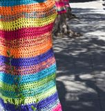 Colourful yarn bombed tree Royalty Free Stock Photography