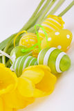 Colourful yellow and green spring Easter Eggs Royalty Free Stock Photo