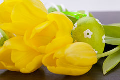 Colourful yellow and green spring Easter Eggs Royalty Free Stock Images