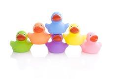 Colourfull ducks Royalty Free Stock Image