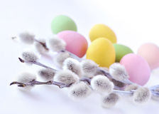 Colourfull easter eggs with willow twigs. On white background Royalty Free Stock Photo