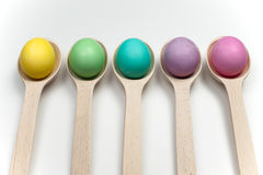 Colourfull easter eggs in wooden spoons isolated on white Royalty Free Stock Images