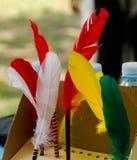 Colourfull fjädrar Arkivbild