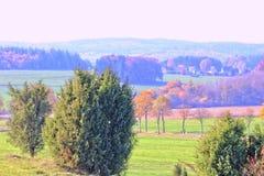 Colourfull natury drzewa obraz stock