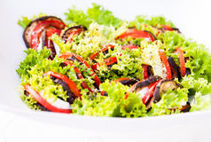 Colourfull salad on white plate. Colourfull green salad on white plate close-up Stock Photos