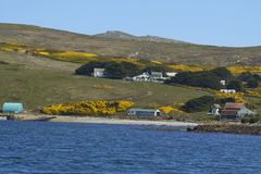 West Point Settlement on West Point Island in the Falkland Islands stock photos