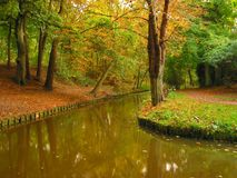 Colours of Autumn. Autumn in park Stock Photography