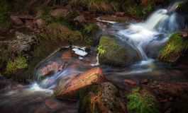 Colours of Autumn in a Brecon stream. A stream in the Brecon Beacon mountains of South Wales displaying the colours of Autumn Stock Photo