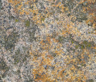 Colours granite stone texture Stock Images