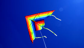 Colours kite Stock Image