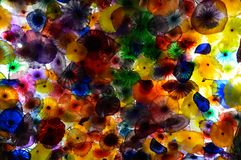 Colours. Murano Crystal colors in Las Vegas royalty free stock image
