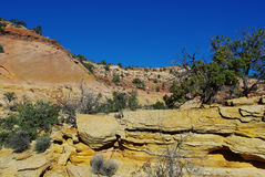 Colours of rocks, Utah. Colours of rocks in side canyon, Grand Stair Escalante National Monument, Utah Royalty Free Stock Image