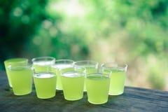Colpi con il liquore del limone Fotografie Stock Libere da Diritti