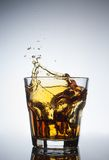 colpi di whiskey con spruzzata su bianco Immagini Stock Libere da Diritti
