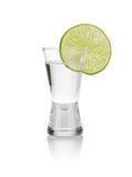 Colpi freddi della vodka fotografia stock libera da diritti