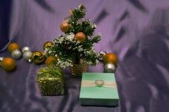 Colpire di modo di bellezza di gioia degli ornamenti di Natale Immagine Stock Libera da Diritti