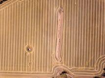 Colpo aereo dei modelli marroni asciutti della terra e del raccolto dell'azienda agricola fotografia stock libera da diritti