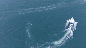 Colpo aereo del fuco del movimento lento sopra il piccolo crogiolo di barca di velocità che precipita verso il viaggio al concett video d archivio
