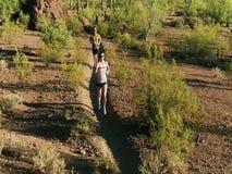 Colpo aereo del movimento lento dei corridori della traccia nel deserto dell'Arizona Sonoran circondato dai saguari archivi video