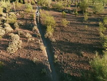 Colpo aereo del movimento lento del motociclista sulla traccia sudoccidentale del deserto stock footage