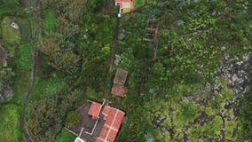 Colpo aereo Un Highland Village pittoresco nel canyon fra due colline e montagne Palme e tropicale denso video d archivio