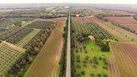 Colpo aereo, una piccola città antica situata in mezzo a paesaggio rurale con il campo coltivato e molti di olivo in Tusc video d archivio