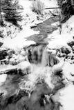 Colpo in bianco e nero del fiume veloce dell'alta montagna alla foresta nevosa Immagine Stock Libera da Diritti