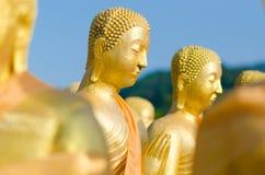 Colpo capo Buddha dorato fotografie stock
