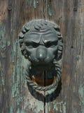 Colpo capo della porta del leone Fotografie Stock Libere da Diritti