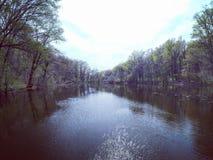 Colpo del fiume Immagini Stock