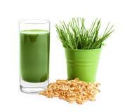 Colpo della bevanda dell'erba del grano su fondo Immagine Stock