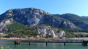 Colpo della pentola del paesaggio dell'oceano degli alberi delle montagne rocciose di paesaggio stock footage
