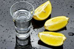 Colpo della vodka Fotografia Stock