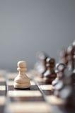 Colpo dello studio di scacchi Fotografia Stock Libera da Diritti
