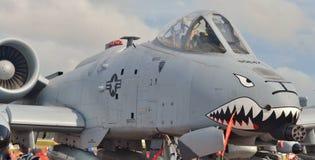 A-10 colpo di fulmine II/Warthog Immagini Stock
